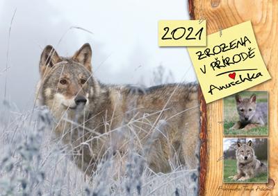 Kalendář 2021 - Zrozena v přírodě - Anuschka